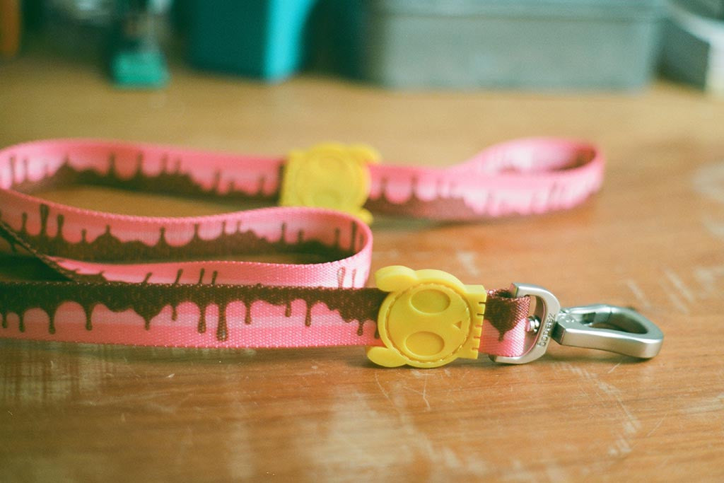 Cake Dog Leash | Zee.Dog