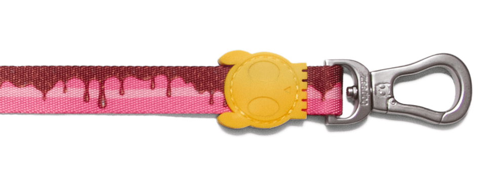 Cake | Dog Leash