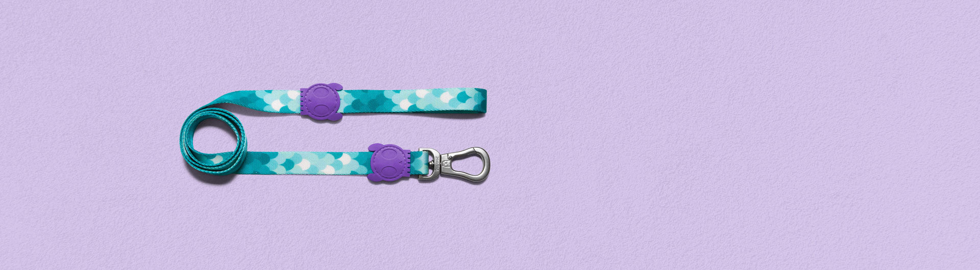 Barracuda Dog Leash | Zee.Dog