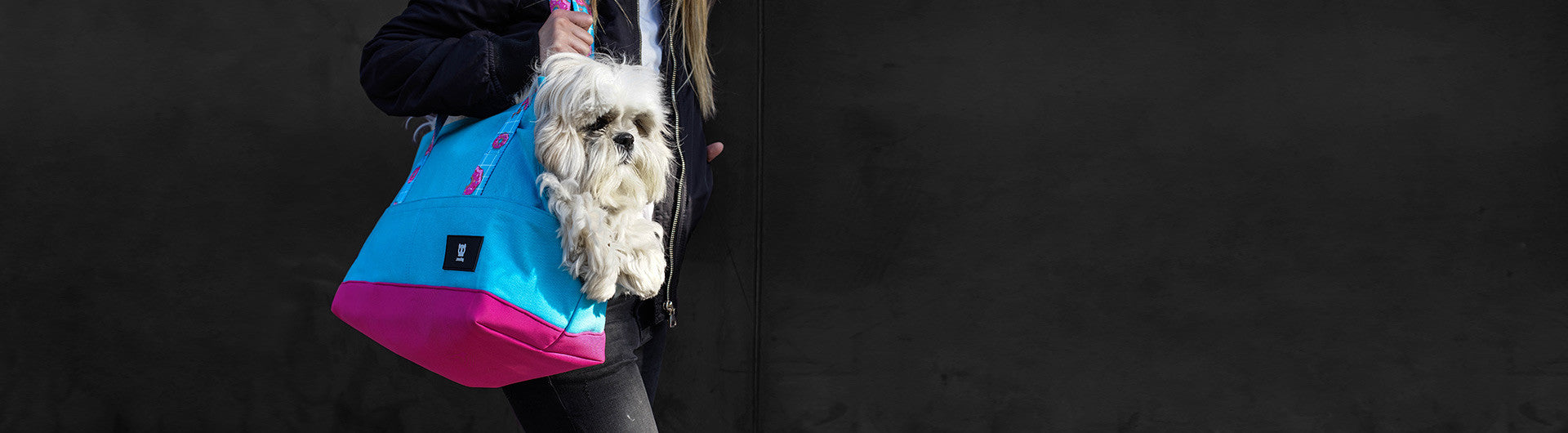 Shih Tzu being carried in Homer Dog Carrier | Zee.Dog