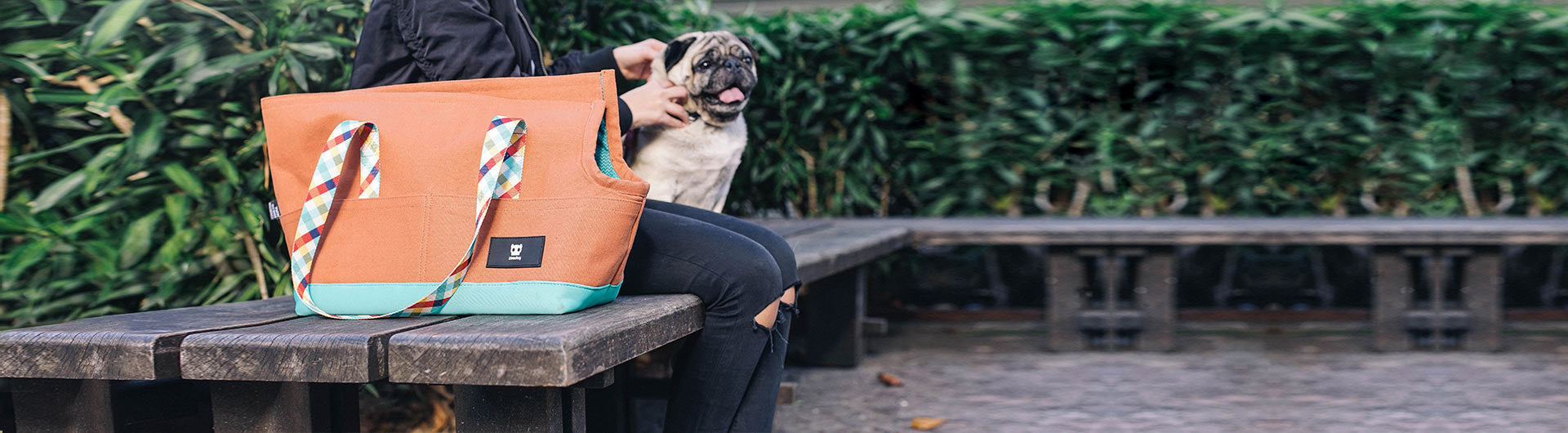 Pug beside the Phantom Dog Carrier | Zee.Dog