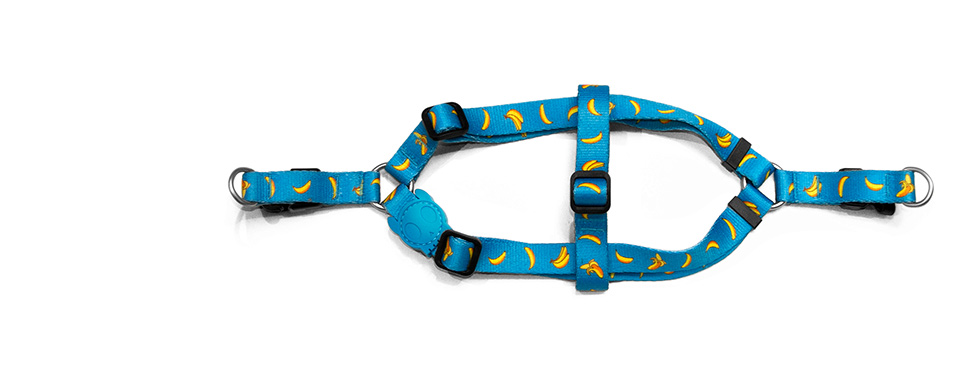 Banana Shake | Step-in Dog Harness