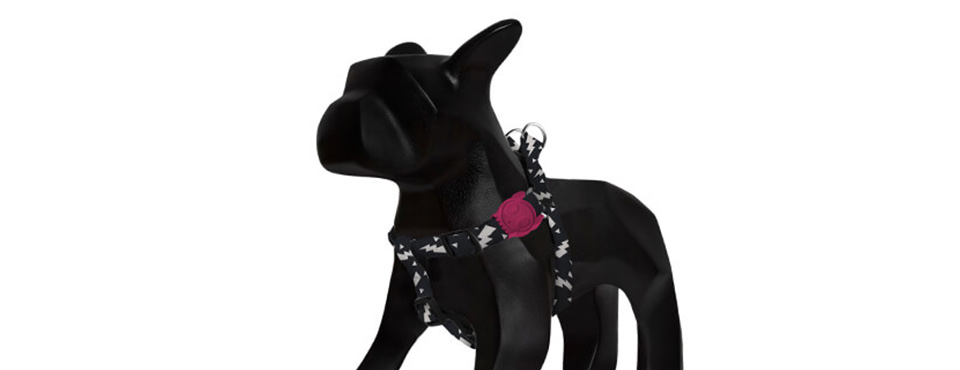 Flash | Dog Harness