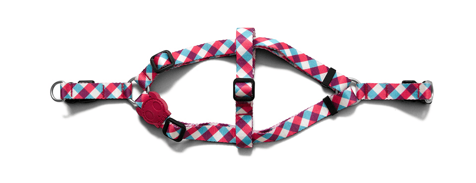 Gummy | Dog Harness