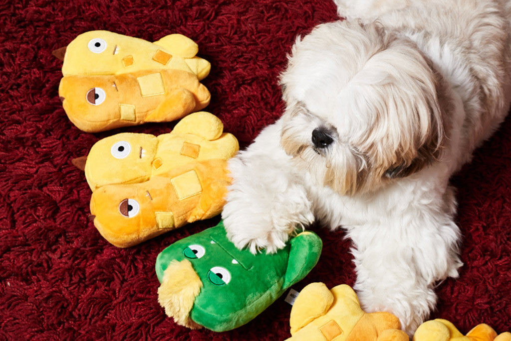 Shih Tzu playing with Alien Flex Jimmy & Joe Dog Toy | Alien Flex
