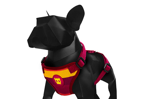 Venice | Air Mesh Dog Harness