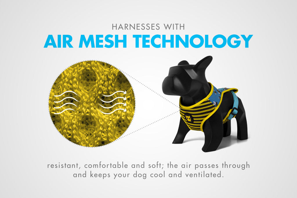 Air Mesh Technology Feature | Zee.Dog