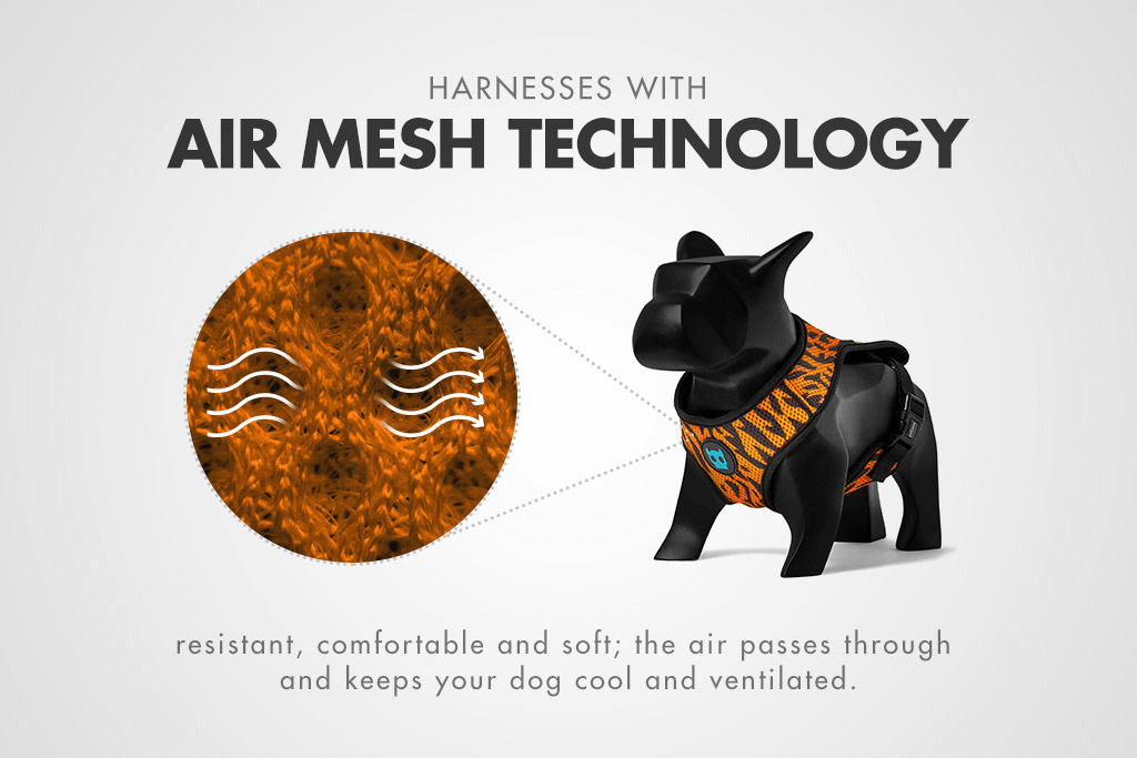 Ayo Mesh Plus Harness Feature | Zee.Dog