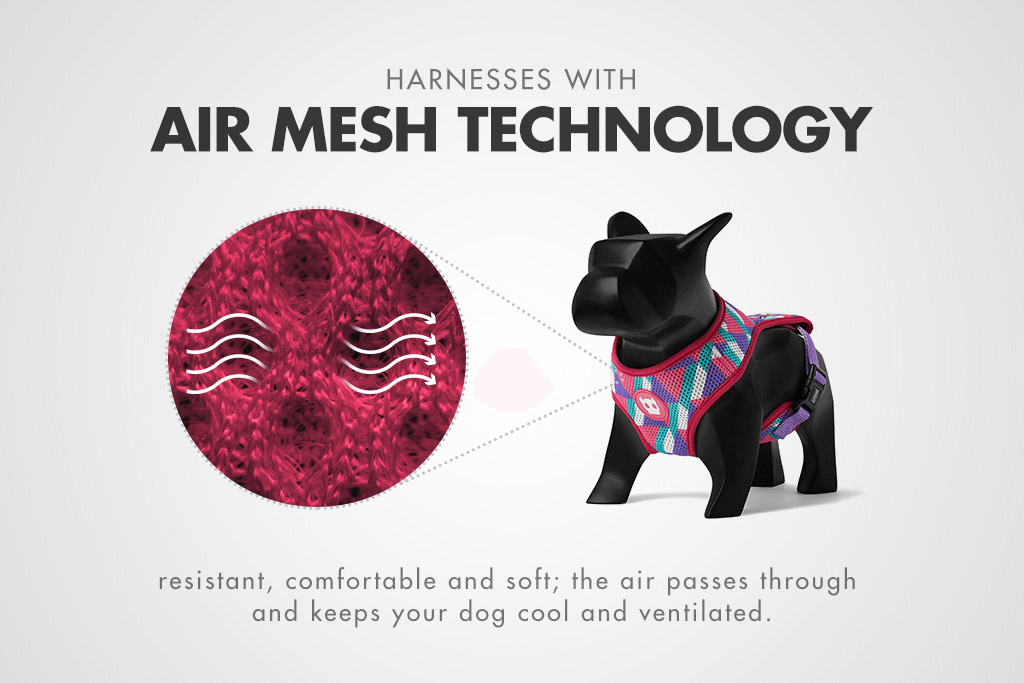 Mesh Features about Adria Mesh Plus Harness | Zee.Dog