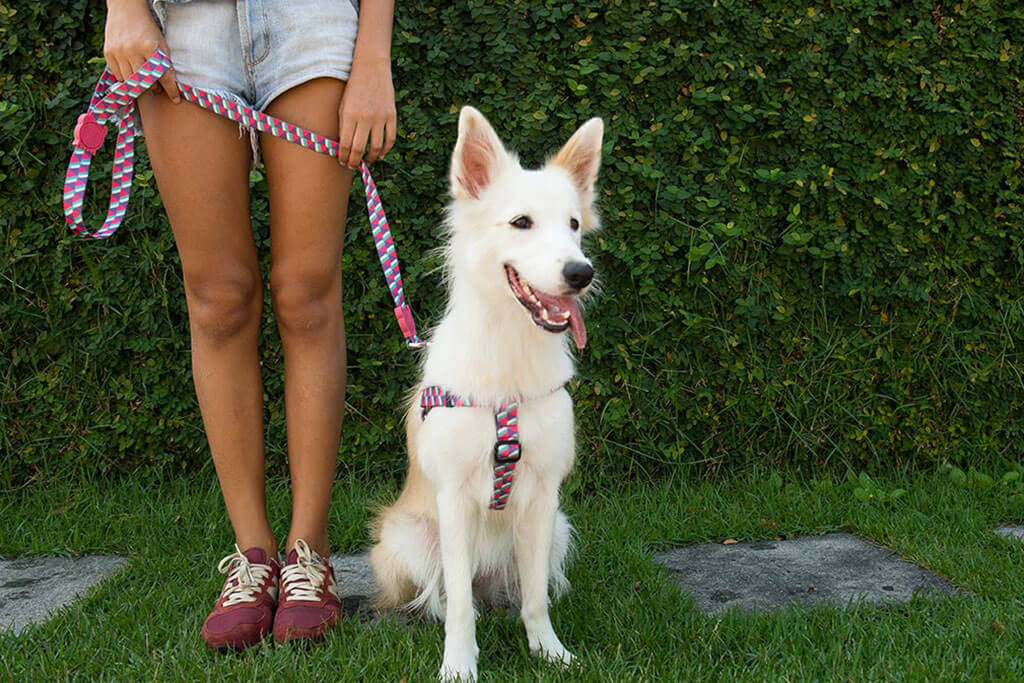 Adria | Dog Leash