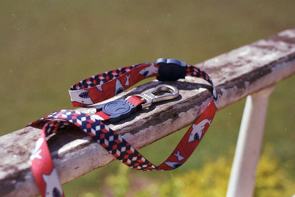 Chewy Dog Leash | Zee.Dog