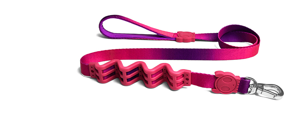 Juno | Shock Absorbent Dog Leash