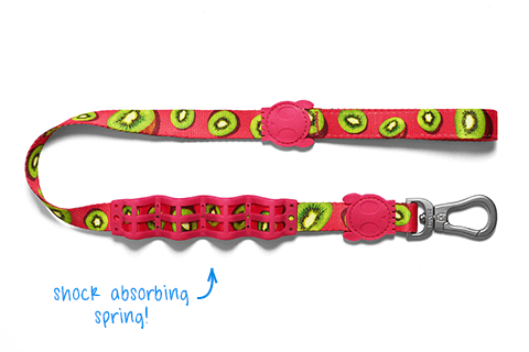 Juice | Shock Absorbent Dog Leash