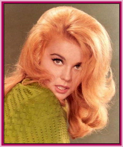 ANN MARGRET - RARE - TV SHOWS COLLECTION - DVD