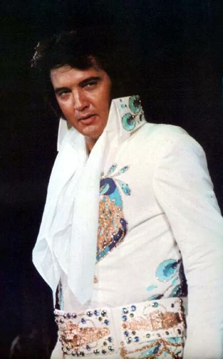 ELVIS 1977 DVD SERIES - RARE COLLECTION! - 9 DVDS