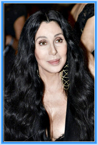 BIOGRAPHY - 1 DVD - CHER