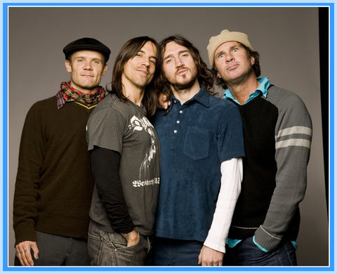 BIOGRAPHY - 1 DVD - RED HOT CHILI PEPPERS
