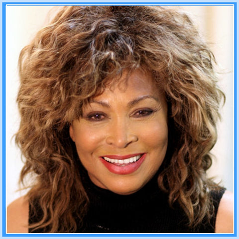 BIOGRAPHY - 1 DVD - TINA TURNER