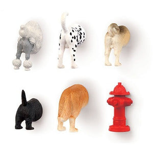 DOG BUTT MAGNETS SET OF 6, Accessories, Kikkerland - Danny Vegh's