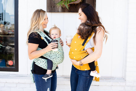 Tula Half Buckle Carrier