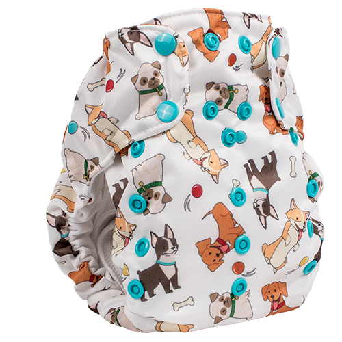 Smart Bottoms Dream Diaper 2.0