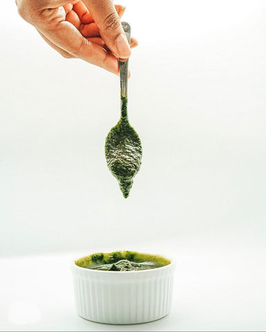 Low FODMAP kale and spinach pesto recipe Hearthy Foods