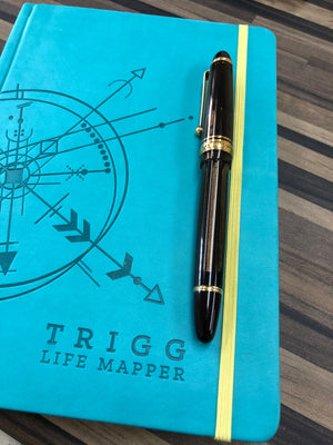 Trigg Life Mapper Review