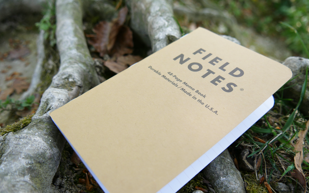 field notes notebook on tree root