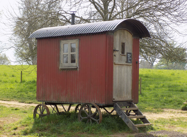 Letter Writing Shed
