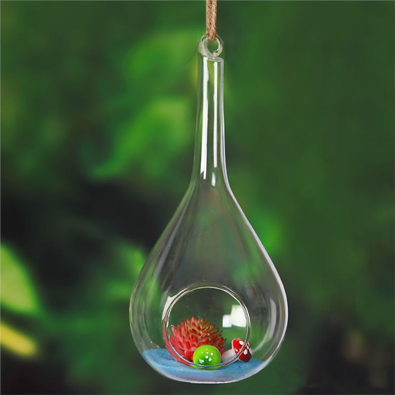Air Planter Glass Terrarium