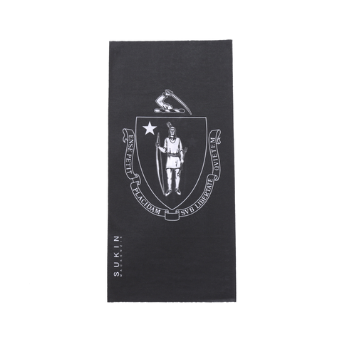 Massachusetts State Flag Bandana Tube G13 MA
