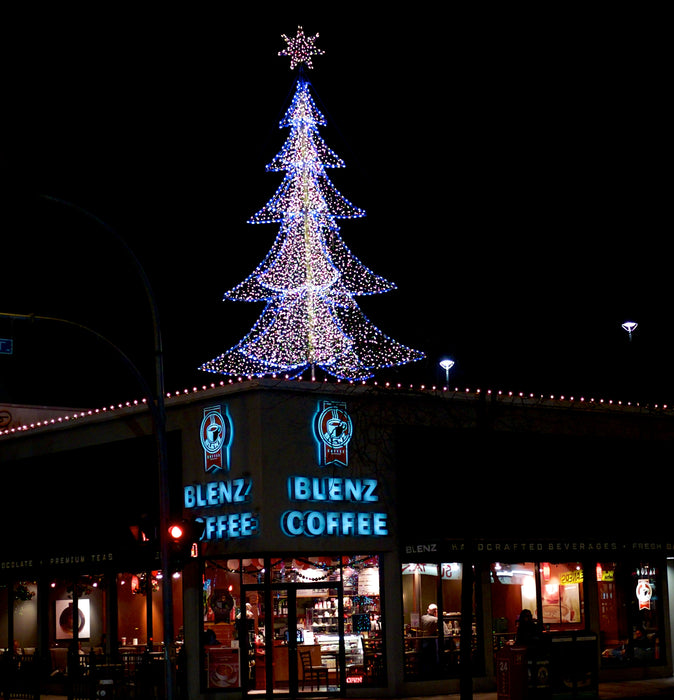 3D, Tree, LED, 6 sided, star, christmas, holiday, display, motif, commercial quality, custom, bulbs, decorating, blenz coffee