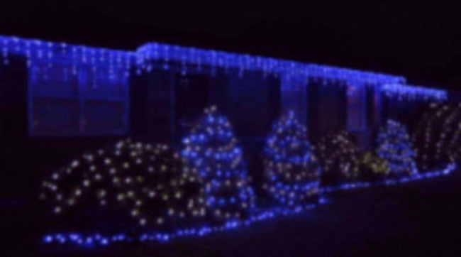 Pro LED Icicle Lights - Blue (steady), outdoor holiday roof lighting, Christmas decorations