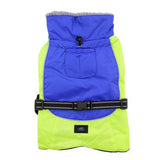 Alpine All Weather Dog Coat - Blue and Green