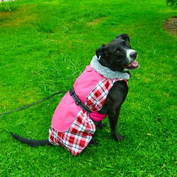 Alpine All Weather Dog Coat - Raspberry Plaid Clearance