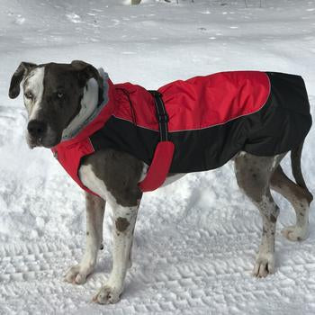 Alpine All Weather Dog Coat - Red and Black