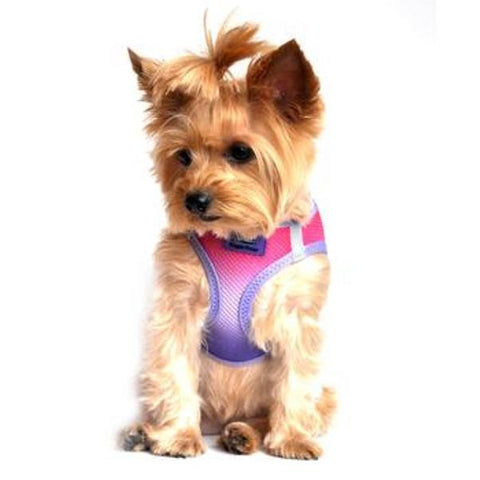 American River Choke Free Dog Harness Ombre Collection - Raspberry Sundae