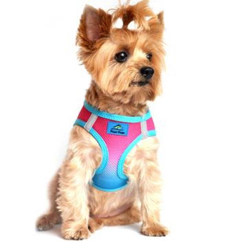 American River Choke Free Dog Harness Ombre Collection - Sugar Plum