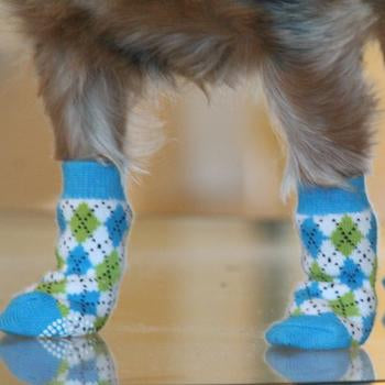 Dog Socks by Doggie Design - Non Skid Blue and Green Argyle