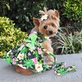 Twilight Black Hawaiian Hibiscus Dog Dress with Matching Leash by Doggie Design