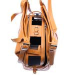Caramel Macchiato Dog Airline Travel Carrier Bag