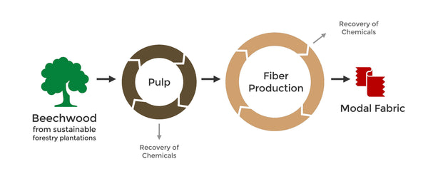 Sustainable Modal fibers