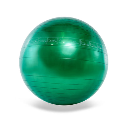 Gym Equipment - Exercise / Fitness Ball