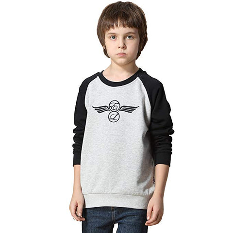 LEO&LILY Boys Casual Colors Fleece Embroidery Sweatshirts T-Shirt LLB811