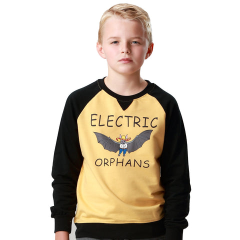 LEO&LILY Big Boys Casual Contrast Color Raglan Sleeves Sweatshirts Hoodie LLB886