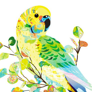 Braw Paper Co. -Budgerigar Art Print (tri020)