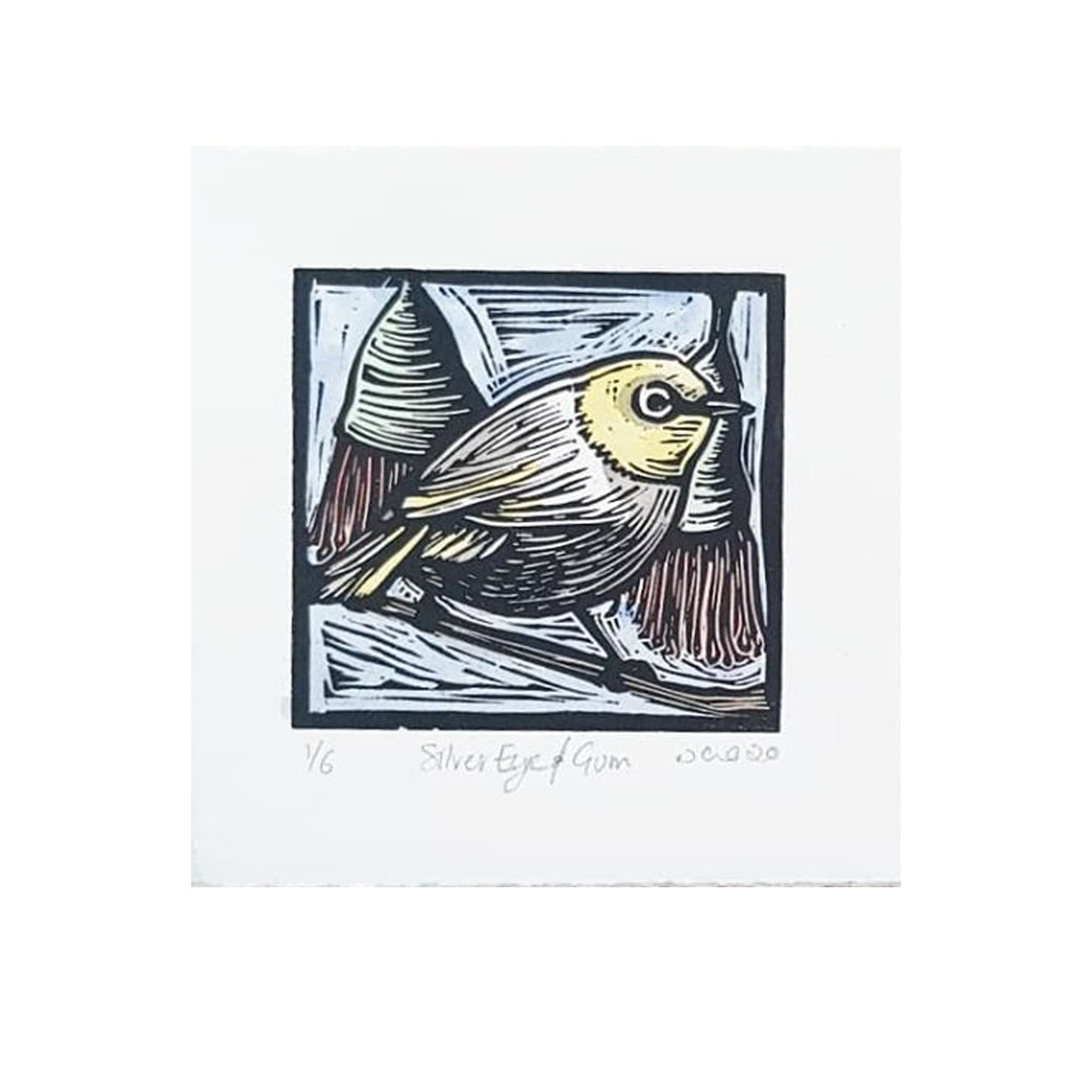 Nicola Cowie -  'Silver Eye and Gum' Framed Linocut (nco6)