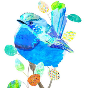 Braw Paper Co. - Splendid Fairy Wren Art Print (tri017)
