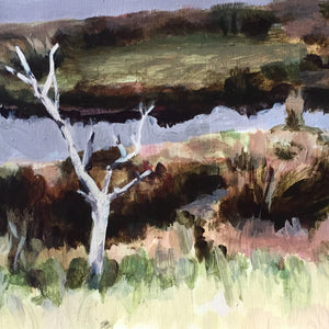 Colour Mixing The Local Landscape with Fiona Harman