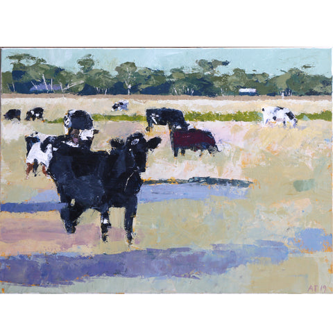 Alastair Taylor -  '9 Cows' Acrylic on Canvas (alta077)
